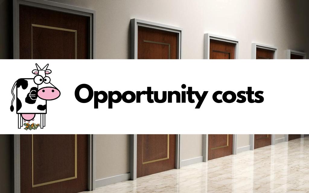 Opportunity costs: wat zijn het en welke impact hebben ze?