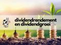 dividendrendement